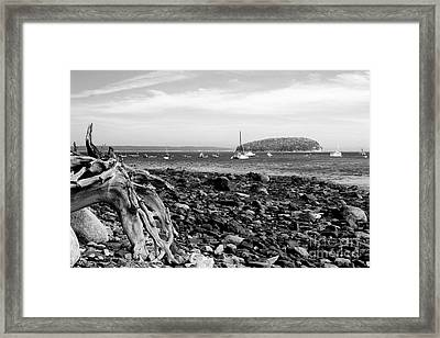 Framed Print featuring the photograph Driftwood And Harbor by Jemmy Archer