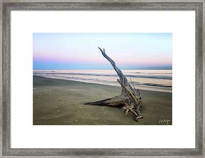 Driftwood At Dusk Framed Print by Phill Doherty
