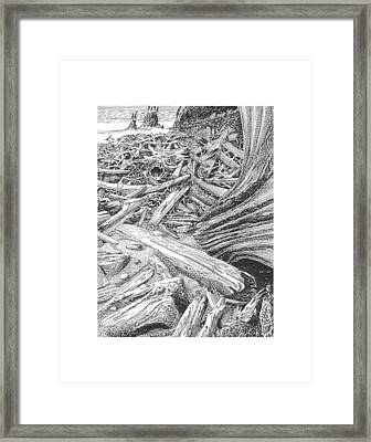 Driftwood Beach Cape Flattery Framed Print by Jack Pumphrey