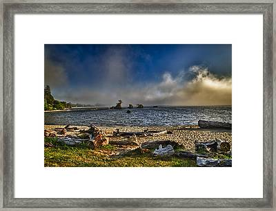 Driftwood Beach Framed Print