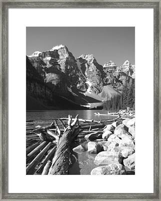 Driftwood - Black And White Framed Print by Marcia Socolik