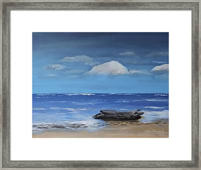 Driftwood Framed Print by Dick Bourgault