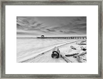 Driftwood In High Key Framed Print by Edward Kreis