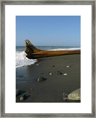 Driftwood Framed Print by Jane Ford