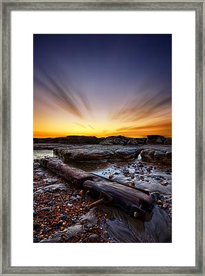 Driftwood Framed Print by Mark Leader