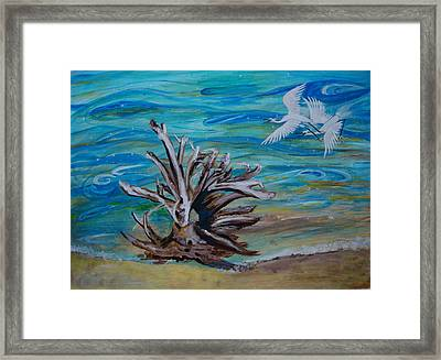 Driftwood On Lake Huron Framed Print by Veronica Rickard