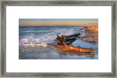 Driftwood On Lake Superior Framed Print by Twenty Two North Photography