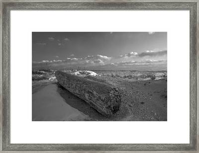 Driftwood Winter Framed Print