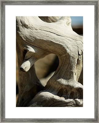 Driftwood With Sky Framed Print