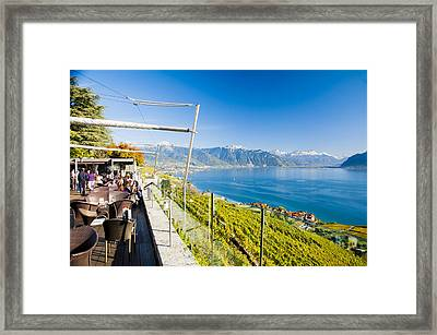 Drink The View Framed Print