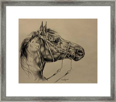 Drinking Horse Mountain Framed Print by Derrick Higgins
