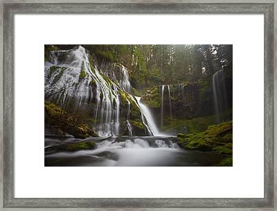 Dripping Wet Framed Print by Darren  White