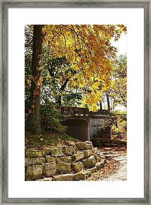Drive Through Sinnissippi Park Framed Print