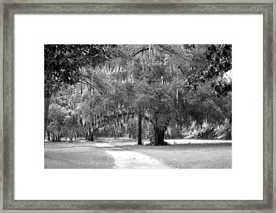 Drive To The Butler Place Framed Print