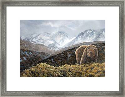 Driven To Rest Framed Print by Donna Tucker