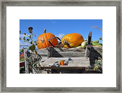 Framed Print featuring the photograph Driver Needed by Minnie Lippiatt