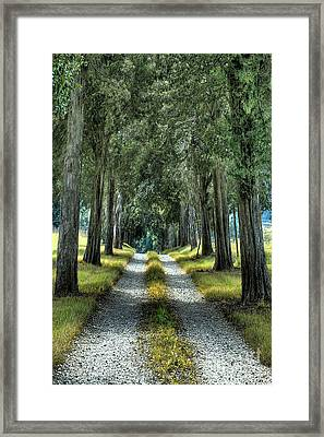 Driveway To Where Framed Print