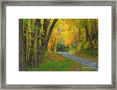 Driving Into Fall Framed Print by Geraldine DeBoer