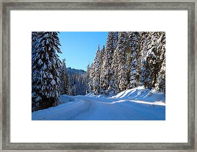 Driving Through The Trees Framed Print by Lynn Hopwood
