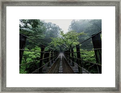 Drizzle Framed Print