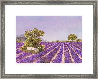Drome Provence Framed Print by Anastasiya Malakhova
