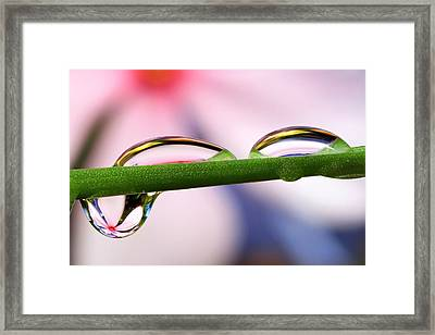 Drop Of Abstract II Framed Print by Gary Yost