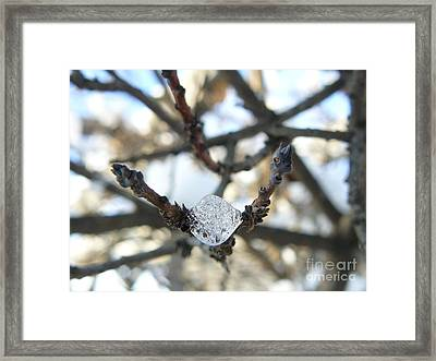 Framed Print featuring the photograph Drop Of Ice by Jane Ford