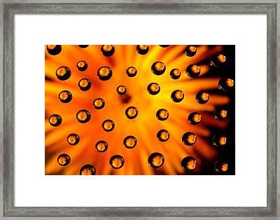 Drop Shot Framed Print by AJM Photography