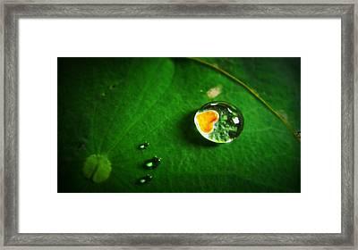Droplet Of Love Framed Print