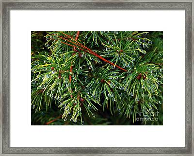 Droplets 4 Framed Print