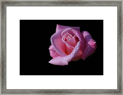 Framed Print featuring the photograph Droplets by Doug Norkum
