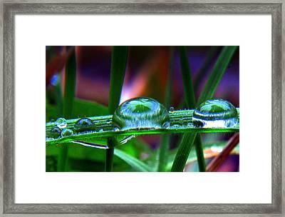 Drops In Color Framed Print