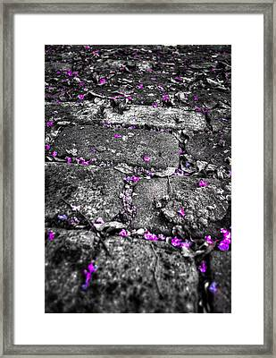 Drops Of Color Framed Print by Andrew Crispi