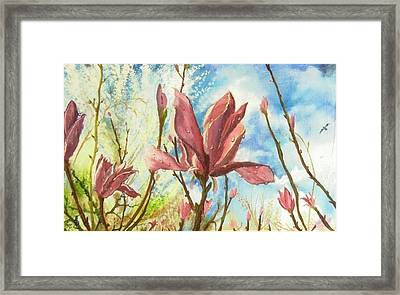 Drops Of Morning Framed Print