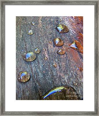 Drops On Wood Framed Print by Michelle Meenawong