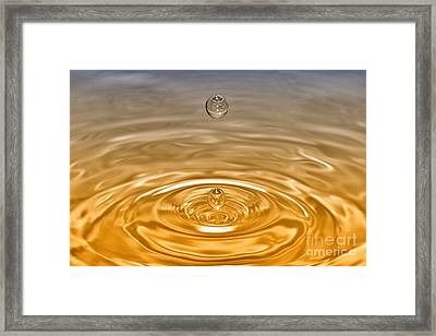Drops Framed Print by Veikko Suikkanen