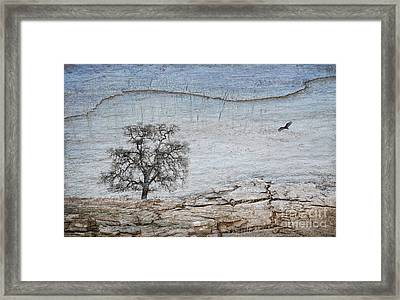Drought Framed Print by Alice Cahill