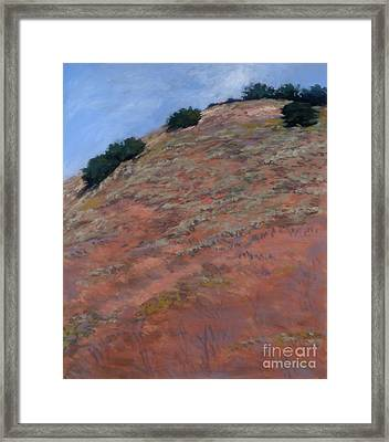 Drum Canyon - Late Spring-  1 Framed Print