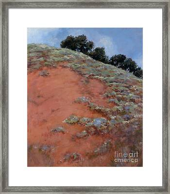 Drum Canyon - Late Spring-  2 Framed Print