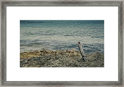 Drunken Sailor Framed Print by Kellianne Hutchinson