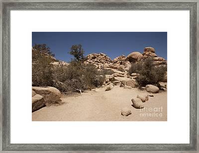 Dry Air Framed Print by Amanda Barcon