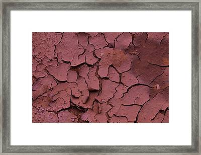 Dry Cracked Earth Framed Print by Garry Gay