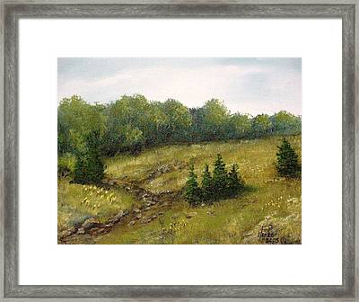 Dry Creek Framed Print by Kenny Henson