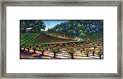 Dry Creek Vineyard Framed Print