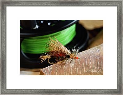 Dry Fly - D003399b Framed Print by Daniel Dempster