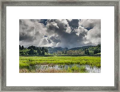 Dry Lagoon In Spring 2 Framed Print by Greg Nyquist