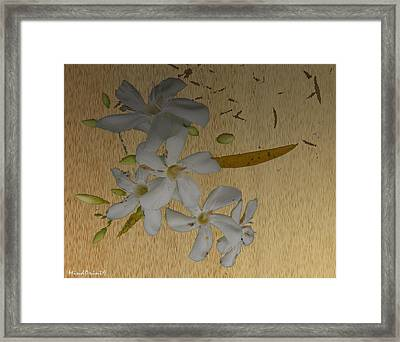 Dry Leaves And Fowers Framed Print