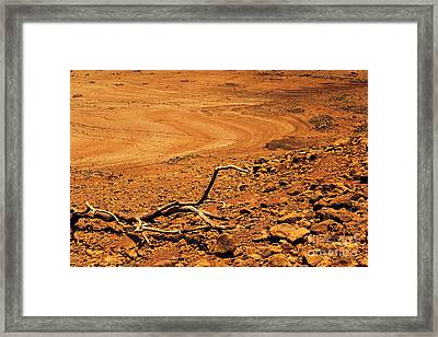 Dry Spell Framed Print by Vishakha Bhagat