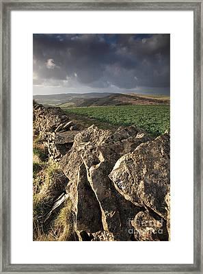 Dry Stone Wall View Framed Print by Deborah Benbrook