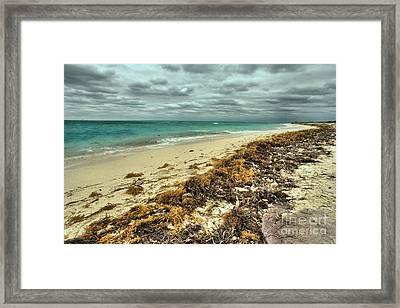Dry Tortugas Beach Framed Print by Adam Jewell